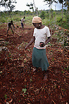 A woman plants beans in a field in Chalo, a small village in the southern mountains of Haiti. The United Methodist Committee on Relief (UMCOR) is working with some families in this village to help them improve their agricultural production.