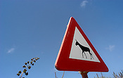 A sign indicates the Donkey Sanctuary on the Caribbean island of Bonaire September 1, 2005. Donkeys, no longer used on the island as beasts of burden, now wander in search of food and often are struck by vehicles. The sanctuary protects over 200 donkeys.