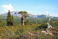 Fongen t.v. og Ruten. Skarvene og Roltdalen nasjonalpark. Foto: Bente Haarstad