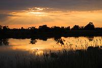 Lagoon at sunset, Camargue, France
