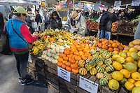 Shopping for squash and gourds in the Union Square Greenmarket in New York on Saturday, October 26, 2013.  (© Richard B. Levine)