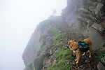 Dog and backpacker on the edge of Phantom Terrace, Sangre de Cristo Wilderness, San Isabel National Forest, Colorado