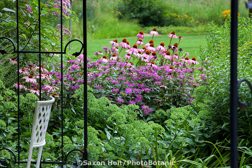 View of summer perennial border garden with Purple Cone Flower (Echinacea), Bee Balm (Monarda), and Sedum seen through iron gates,  Willenberg garden