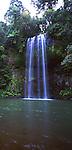 Millaa Millaa Falls, Atherton Tablelands, Queenland