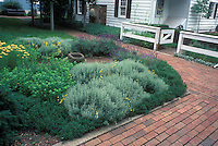 Pretty backyard herb garden with brick patio, lavender, santolina, yarrow, germander border