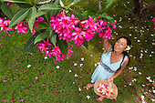 A local woman picks pink plumeria flowers in a yard on O'ahu.