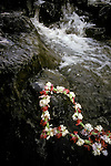 Lei of flowers tossed into seven sacred pools in Hana Maui Hawaii