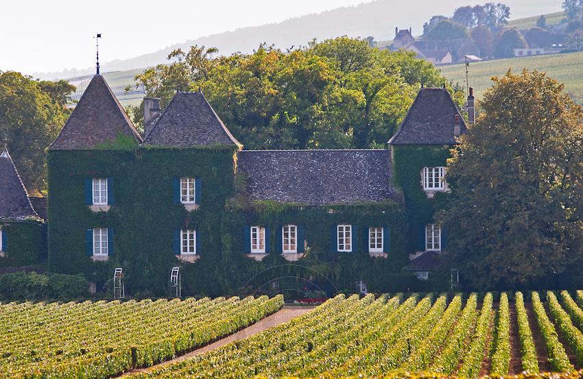 Vineyard. Chateau du Clos de la Commaraine. Pommard, Cote de Beaune, d'Or, Burgundy, France