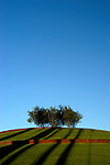 Blue sky over a cluster of trees atop a hill with spiral walkway in Gold Medal Park.