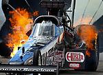 NHRA 2014 Race04 Las Vegas