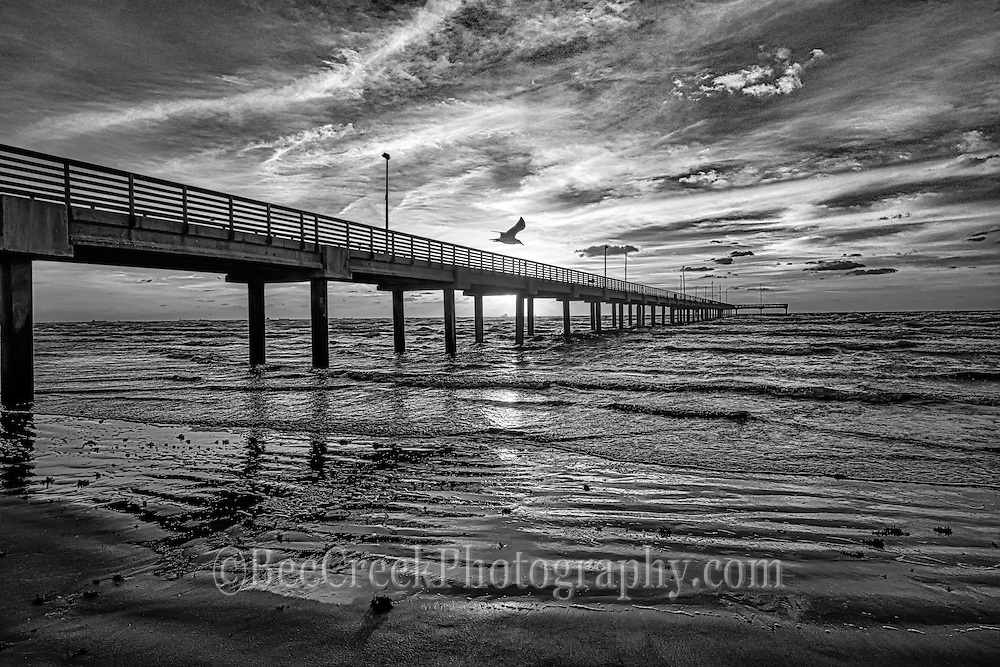 Texas Pier along the gulf coast as the sun was coming up in black and white.  I like the bw because it really brings out the textures of the sand and surf and the wonderful clouds as a siloutte of a sea gull flys over.