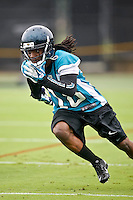 Jaguars Rookie Mini Camp 05-03-13