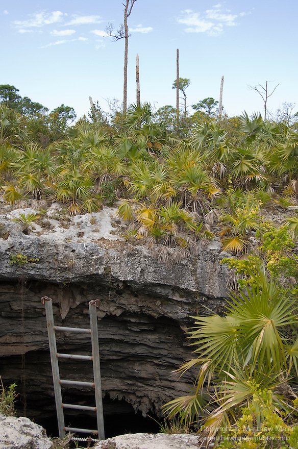 Grand Bahama Island, The Bahamas; a view of the opening to Owl's Hole Cave, named for the owls that nest on a ledge within the opening, it is a limestone sinkhole with a rough circular entrance approximately 50 feet in diameter, 30 feet down the ladder is the water's surface