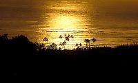 Late afternoon setting sun, Waimea, west Kaua`i, near Waimea Plantation Cottages.