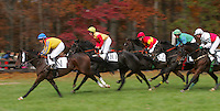 Riders race past spectators during the 3rd race during the Montpelier Hunt Races Saturday in Orange, Va. Photo/Andrew Shurtleff