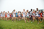 21 NOV 2011: University of Wisconsin runners Mohammed Ahmed (769), Ryan Collins (773) and Elliot Krause (776) lead the pack out of the start during the Division I Men's Cross Country Championship held at the Wabash Valley Family Sports Center in Terre Haute, IN. University of Wisconsin won the team national title. Brett Wilhelm/NCAA Photos.