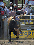 Tate Stratton, from Stanley. NM.,  tries to hang onto Smoke Singal during the Xtreme Bull Riding Competition at the Kitsap County Fair and Stampede  held Aug. 26 to Aug. 30, 2009 in Silverdale, WA. Jim Bryant Photo. All Right Reserved. © 2009