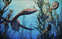 Illustrated information panel depicting the dinosaurs of the Cretaceous Period (Niobrara Formation), 80 million years ago, at the Garden of the Gods Visitor and Nature Center, at the Garden of The Gods, an area of geological rock formations protected as a public park, near Colorado Springs, Colorado, USA. Ancient marine animal known as Plesiosaurs, along with sharks and relatives of the modern nautilus called ammonites, prowled the deep ocean waters of the Cretaceous Seaway, which then covered central Colorado. The Garden of the Gods was listed as a National Natural Landmark in 1971. Picture by Manuel Cohen