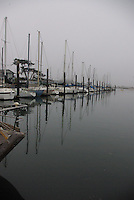 Moss Landing boat dock on a cloudy morning.