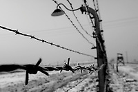 Auschwitz / Poland 2011.Close-up of a barbed wire fence in Auschwitz-Birkenau, the largest Nazi extermination camp in operation during World War II..Photo Livio Senigalliesi