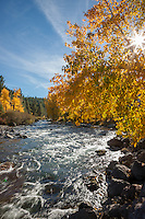"""Truckee River in Autumn 6"" - Photograph of the Truckee River in Autumn near Downtown Truckee, California."