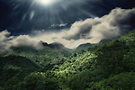 A sunny day in El Yunque National Park in Puerto Rico with clouds and fog on the rain forest