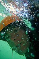 Underwater Portrait - Kayaker on Snake River - Jackson - Wyoming - USA