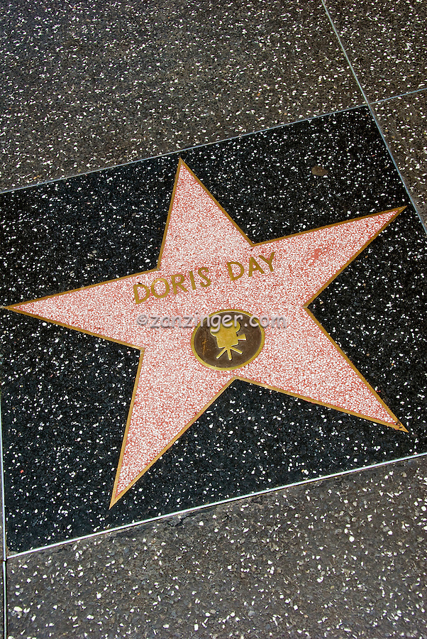 Doris day hollywood walk of fame celebrity stars sidewalk