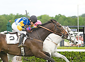 Jockey Danielle Hodsdon, aboard Mrs. Calvin Houghland's Nationbuilder, won her 100 career steeplechase race on Saturday, in the $50,000 Queen's Cup in Mineral Springs, N.C.