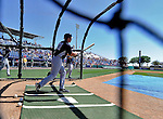 12 March 2011: New York Yankees' infielder Doug Bernier takes batting practice prior to a Spring Training game against the Washington Nationals at Space Coast Stadium in Viera, Florida. The Nationals edged out the Yankees 6-5 in Grapefruit League action. Mandatory Credit: Ed Wolfstein Photo