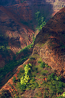 The red dirt and greenery of Waimea Canyon on Kauai is highlighted by dappled light.