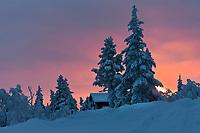 Laponie - Lapland