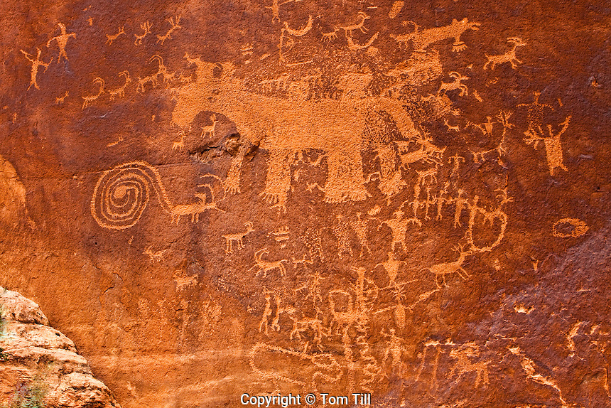Complex petroglyph panel, Proposed La Sal Waters Wilderness, Utah