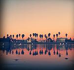 Venice Beach reflection on the wet sand on January 16, 2012.