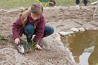 Grundschulklasse, Schulklasse legt einen Schulteich, Schul-Teich, Teich, Gartenteich, Garten-Teich im Schulgarten an, Mädchen, Kind pflanzt die ersten kleinen Wasserpflanzen am Uferrand des neu angelegten Teiches ein, als Substrat dient feinkörniger Kies
