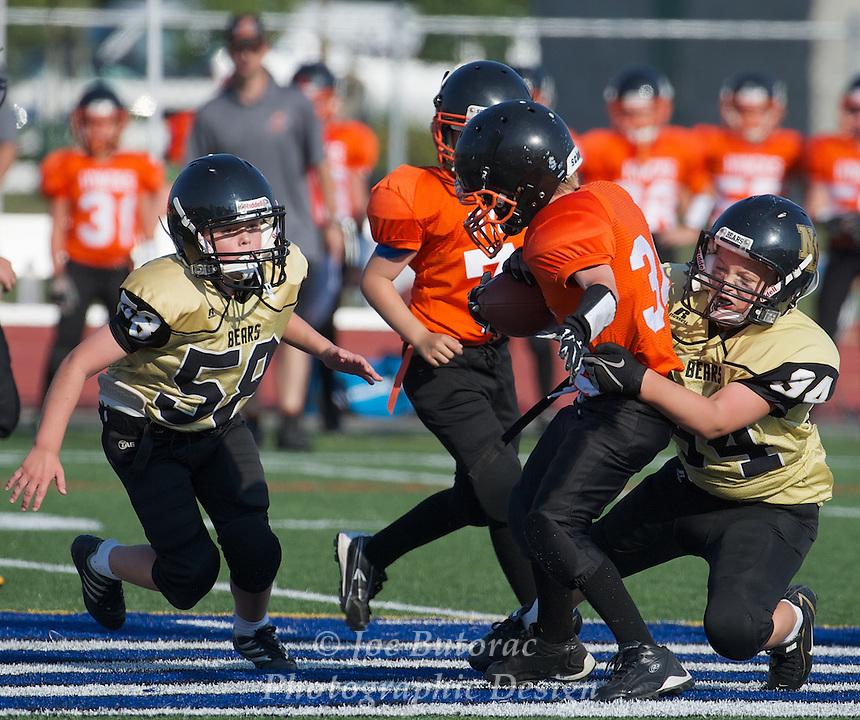 North Langley Bears vs Royal City Hyacks Pee Wee Golden Helmet Tournament