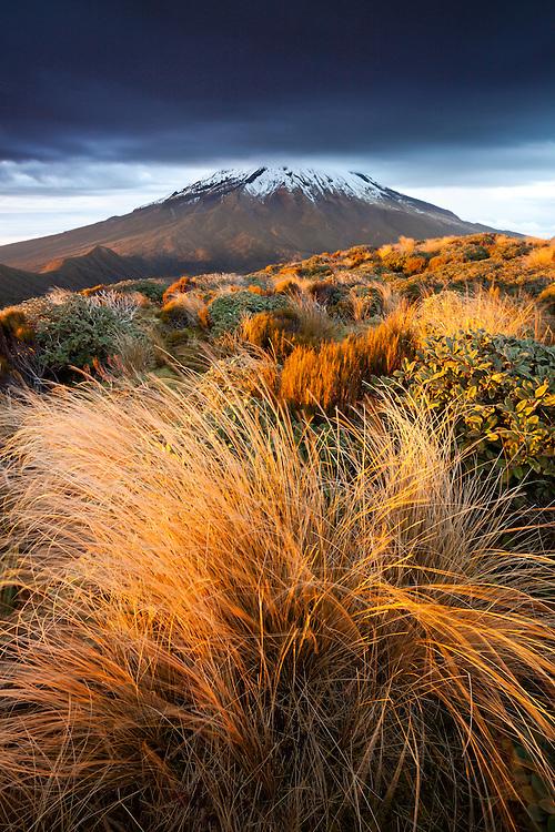 Mount Taranaki (Egmont), sunrise, North Island, New Zealand - stock photo, canvas, fine art print