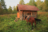 Sabit Galin unloads his horse and sets up the necessary for a night in one of the reserve's cabins.