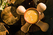 Butternut Squash Soup by Sheryl Cornett