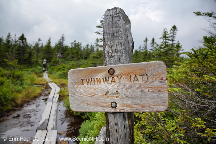 The Appalachian Trail (Twinway Trail) during the summer months in the White Mountains, New Hampshire USA.