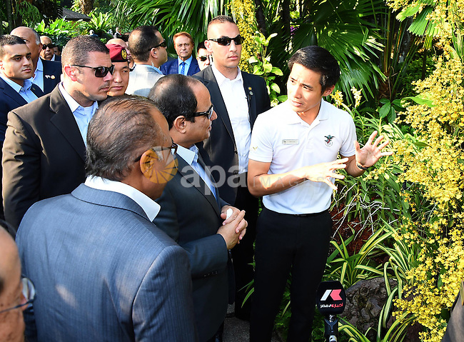 """Egypt's President Abdel Fattah al-Sisi looks at """"dendrobium Abdel Fattah al-Sisi"""" orchids named in his honour during a visit to the Botanical gardens in Singapore on August 31, 2015. President Abdel Fattah al-Sisi is on a three-day state visit at the invitation of President Tony Tan Keng Yam. Photo by Egyptian President Office"""