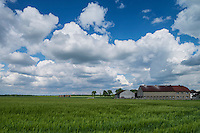 Farm fields in Grabine - Grabina, Prudnik County, Opole Voivodship, Silesia, Poland