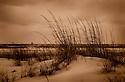 Carmen K. Sisson, Sisson, Dauphin Island, Alabama, beach, sea, ocean, water, peaceful, horizontal