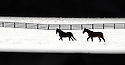 A pair of horses run in a snow-covered pasture in Woodburn, Ky.,  Saturday, Jan. 30, 2010. Snow moved into southcentral Kentucky nearly a half day later than expected but dumping about 6 inches in some areas.