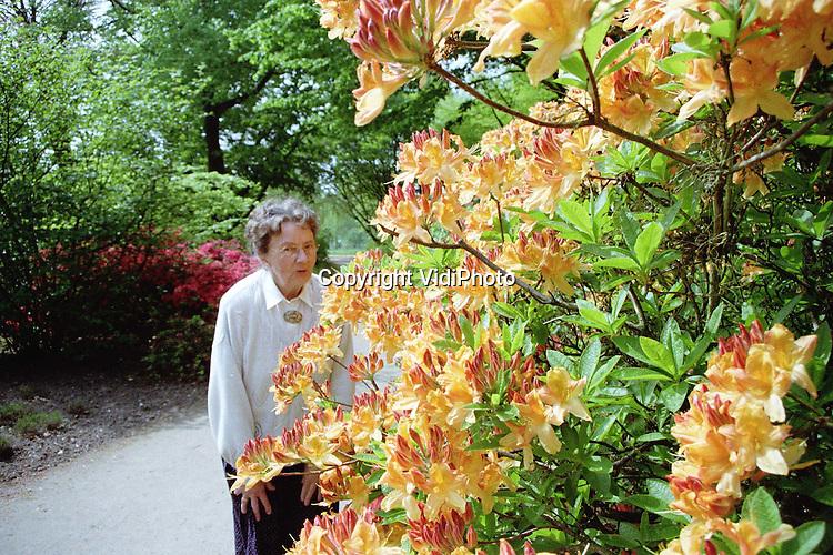 Foto: VidiPhoto..WAGENINGEN - Het Arboretum op de Wageningse Berg krijgt toezichthouders. Daarmee wil eigenaar Landbouw Universiteit het veiligheidsgevoel van bezoekers, vooral hoogbejaarden, garanderen. De tuin biedt een grote variatie aan vreemdsoortige bomen, bloemen en planten. De toezichthouders krijgen bovendien als taak de bezoekers in goede banen te leiden. Daarnaast moeten ze er voor zorgen dat er geen planten of bloemen meer gestolen worden. Voor de liefhebbers komt er een gratis pluktuin..