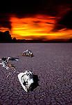 NOTHING LEFT BUT BONES, GLOBAL WARMING,ENVIRONMENT AND SAFE OUR PLANET