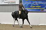 12/03/2017 - Classes 12 to 18 - Unaffiliated Showing - Brook Farm training centre