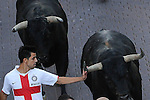 A participant touches the horn of a bull as he runs in front of Condes de la Maze's bulls during a bull run of the San Sebastian de los Reyes Festival, near Madrid, on august 28, 2014. © Pedro ARMESTRE