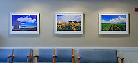 Jake Rajs Prints in Peconic Bay Medical Center, Riverhead, New York, Waiting Room
