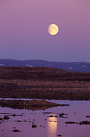 731000018 a full moon rises above a serene tidal bay on the northern edge of wager bay in the nunuvat territories of canada